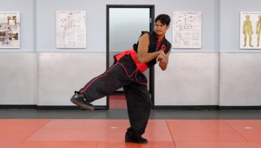 Tai Sifu Ben Stanley Demonstrating a Low Side Kick to the Knee