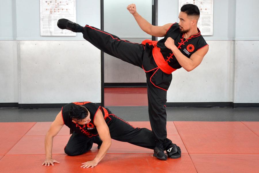 Choy Li Fut Kung-Fu's Leg Sweep